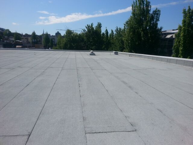 Different Types of Roofs in Toronto