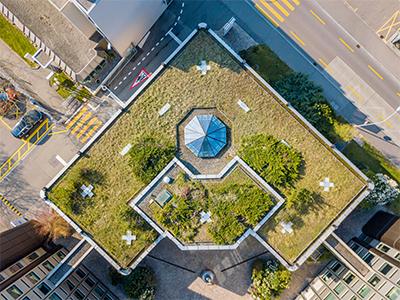 Green Roofs Toronto, Toronto Green Roof Contractor Bird Eye