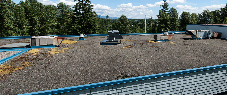 Roof Maintenance Tips Anatomy