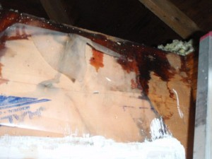 attic condensation