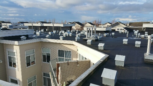 Lower Mainland Roofers