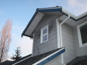 mold grows if soffits don't work